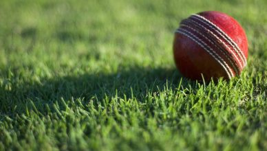 Cricket ball on field cricket betting sites new zealand online