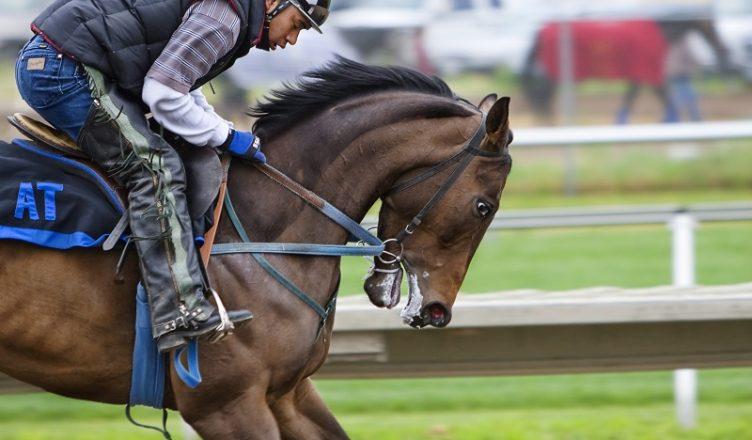 horse racing betting sites australia