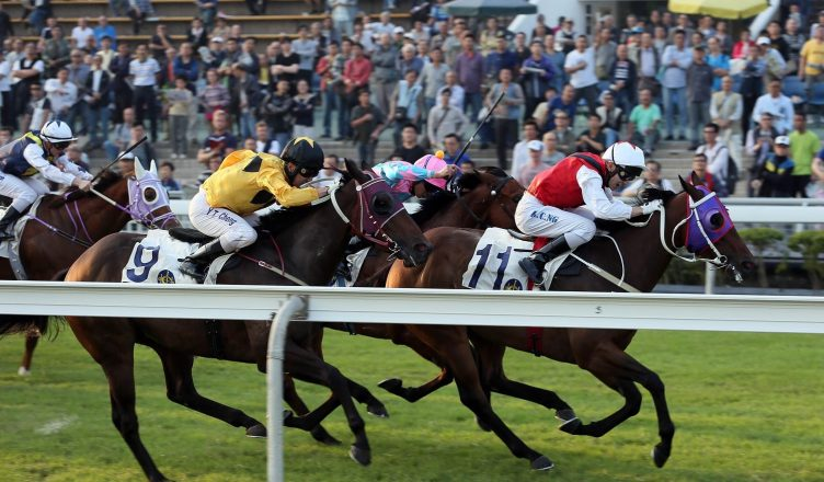 Top Tips And Advice For Studying Horse Racing Form